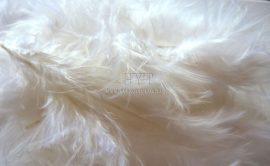 Marabu toll - Fehér